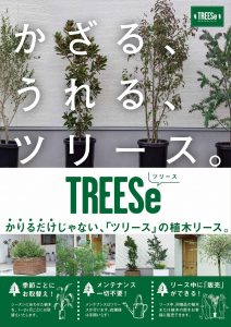 木のレンタル