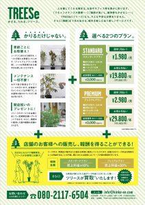 植木のレンタル